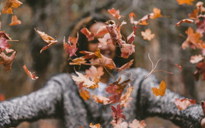 The Changing Season of Autumn & The Essentials To Maintain